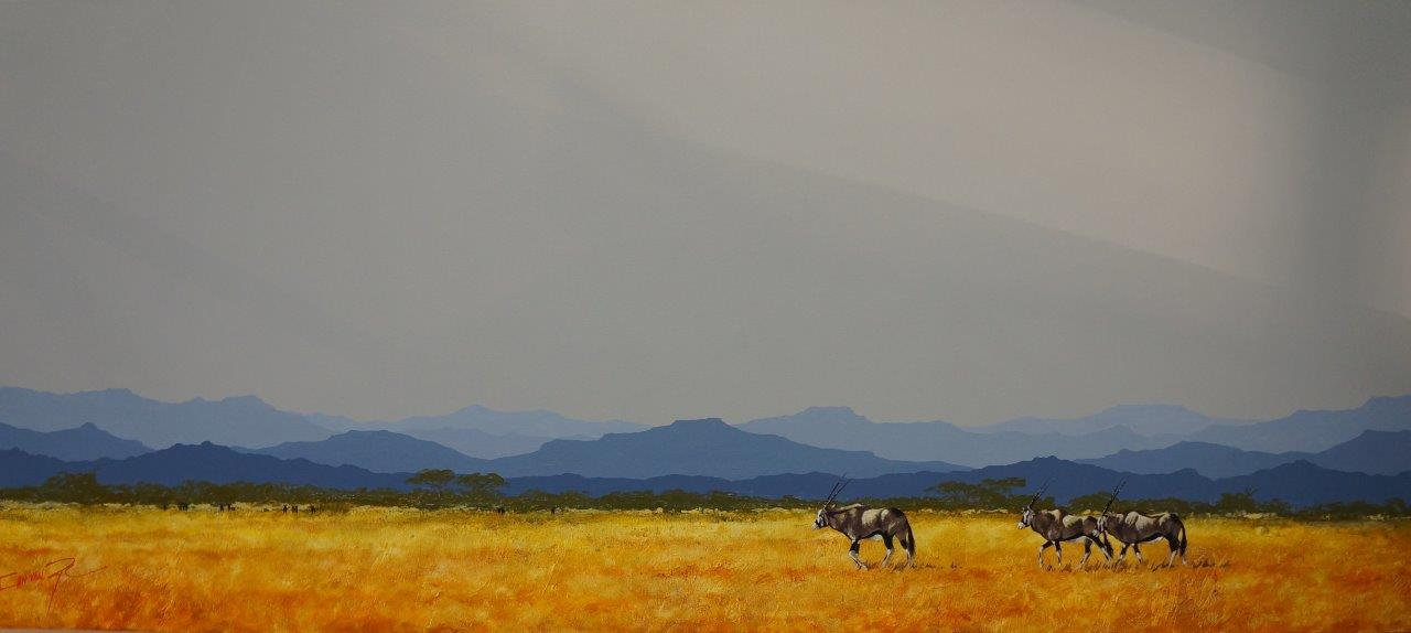 Botswanabok