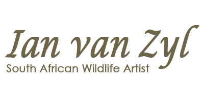 Ian Van Zyl - South African Wildlife Artist